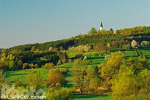 Photo : Chapelle et colline du Kirchberg, Berg, Alsace Bossue, Bas-Rhin (67)