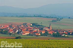 Photo : Village de Reutenbourg, Bas-Rhin (67)