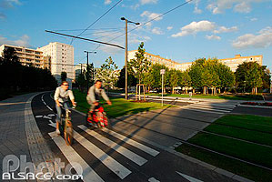 Photo : Cyclistes, Rue du Pont Churchill, Quartier de l'Esplanade, Strasbourg, Bas-Rhin (67)