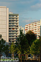 Photo : Immeubles, Quartier de l'Esplanade, Strasbourg, Bas-Rhin (67)