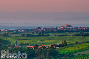 Photo : Vigne et village d'Epfig, Bas-Rhin (67), Alsace, France