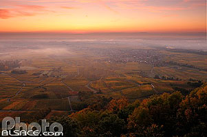 Photo : Village et vignoble de Scherwiller au lever du soleil, Scherwiller, Bas-Rhin (67), Alsace, France