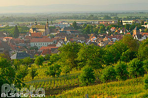Photo : Molsheim, Bas-Rhin (67), Alsace, France