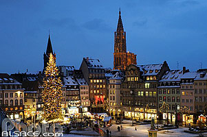 Photo : Illumination du grand sapin de Noël place Kléber et la Cathédrale, Strasbourg, Bas-Rhin (67), Alsace, France