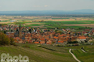 Photo : Vignoble et village de Dambach-la-Ville, Bas-Rhin (67)