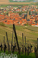 Photo : Vigne et village de Dambach-la-Ville, Bas-Rhin (67), Alsace, France