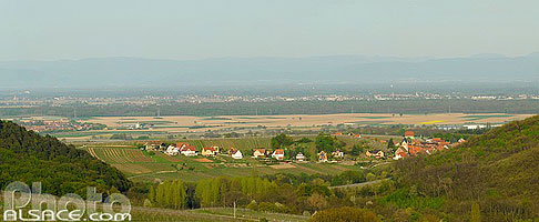 Photo : Village d'Itterswiller et plaine d'Alsace, Bas-Rhin (67)