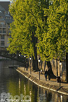 Photo : Quai Saint-Thomas au printemps, Strasbourg, Bas-Rhin (67), Alsace, France