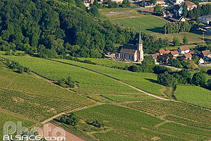 Photo : Chapelle Saint-Andre et le vignoble d'Andlau, Bas-Rhin (67), Alsace, France