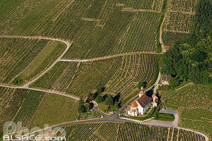 Photo : Chapelle Saint-Sebastien dans le vignoble, Dambach-la-Ville, Bas-Rhin (67), Alsace, France