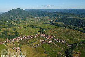 Photo : Vignoble et village de Nothalten et l'Ungersberg, Bas-Rhin (67)