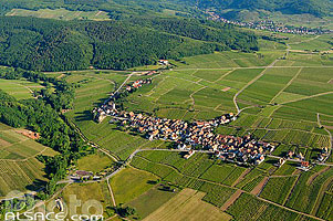 Photo : Vignoble et village d'Itterswiller, Bas-Rhin (67), Alsace, France