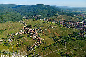 Photo : Vignoble et village de Mittelbergheim, Bas-Rhin (67)