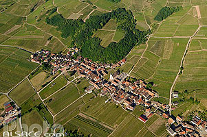 Photo : Village et vignoble de Nothalten, Bas-Rhin (67), Alsace, France