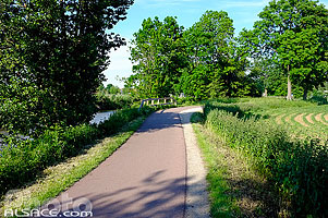 Photo : Piste cyclable le long du Canal de la Bruche, Wolfisheim, Bas-Rhin (67), Alsace, France