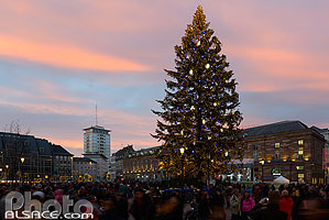 Photo : Le Grand Sapin de Noël, Place Kélber, Strasbourg, Bas-Rhin (67)