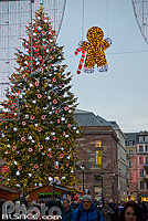 Photo : Le Grand sapin de Noël, Place Kléber, Strasbourg, Bas-Rhin (67), Alsace, France