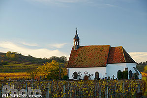 Photo : Chapelle Saint-Denis dans le vignoble de Wolxheim, Bas-Rhin (67)
