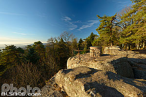 Photo : Rocher du Maennelstein, La Bloss, Barr, Bas-Rhin (67)