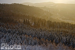 Photo : Bas-Rhin (67), Barr, Forêt de Barr sous la neige depuis le rocher du Neuntelstein // FRANCE, Bas-Rhin (67), Barr, Barr forest under snow in winter from the Neuntelstein rock