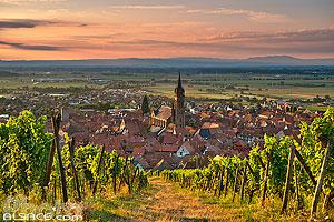 Photo : Vignoble Grand cru Frankstein et Dambach-la-Ville, Bas-Rhin (67), Alsace, France