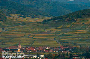 Photo : Village et vignoble de Kientzheim, Haut-Rhin (68), Alsace, France