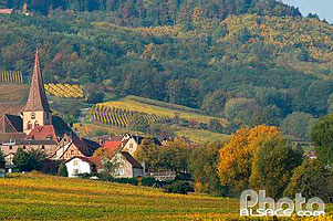 Photo : Village de Niedermorschwihr, Haut-Rhin (68), Alsace, France