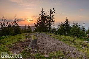 Sommet du Petit Brézouard, Fréland, Parc naturel régional des Ballons des Vosges, Haut-Rhin (68), Alsace, France