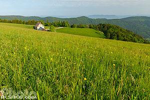 Auberge du Haycot, Sainte-Marie-aux-Mines, Val d'Argent, Parc naturel régional des Ballons des Vosges, Haut-Rhin (68), Alsace, France