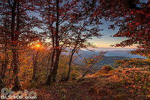 Tête des Perches et lever de soleil, Rimbach-près-Masevaux, Haut-Rhin (68), Alsace, France