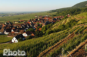 Photo : Gueberschwihr, Haut-Rhin (68)