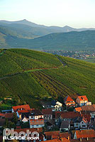 Photo : Village et vignoble de Katzenthal, Haut-Rhin (68), Alsace, France