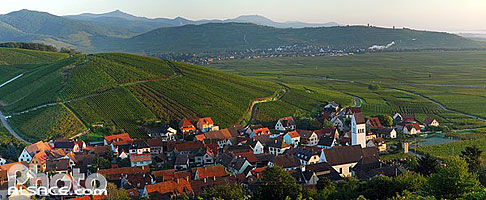 Photo : Village et vignoble du grand cru Wineck-Schlossbergde, Katzenthal, Haut-Rhin (68), Alsace, France