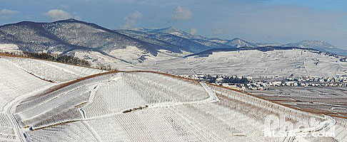 Photo : Vignoble du grand cru Wineck-Schlossberg en hiver, Haut-Rhin (68), Alsace, France