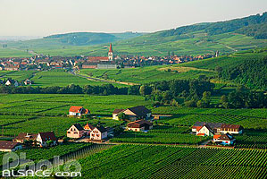 Photo : Vignoble et village de Ammerschwihr, Haut-Rhin (68)