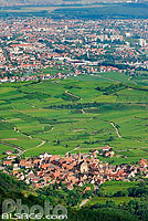 Photo : Village de Niedermorschwihr et Colmar, Haut-Rhin (68), Alsace, France