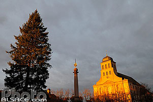 Photo : Grand Sapin et Eglise Royale Saint-Louis, Neuf-Brisach, Haut-Rhin (68)