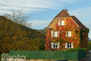Photo : Maison d'Albert Schweitzer, Gunsbach, Haut-Rhin (68), Alsace, France