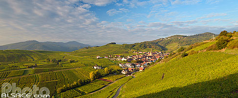 Photo : Vignoble du Grand cru Sommerberg et village de Niedermorschwihr, Haut-Rhin (68)