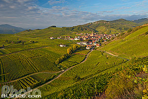 Photo : Vignoble du Grand cru Sommerberg et village de Niedermorschwihr, Haut-Rhin (68), Alsace, France