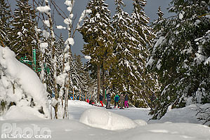 Photo : Piste de ski Carrefour, Station du Lac Blanc, Orbey, Haut-Rhin (68), Alsace, France
