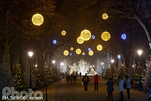Photo : Décoration et illumination de Noël, Parc du Champ de Mars, Colmar, Haut-Rhin (68)