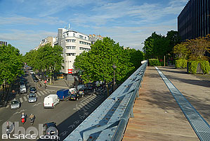 Photo : La Coulée Verte, Avenue Daumesnil, Paris (75012)
