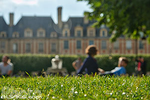 Photo : Pelouse dans le Square Louis-XIII, Place des Vosges, Quartier du Marais, Paris (75004)