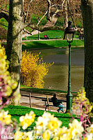 Photo : Parc des buttes Chaumont, Paris (75)
