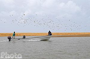 Photo : Bateau sur le lagune, Grand-Popo, Mono, Bénin
