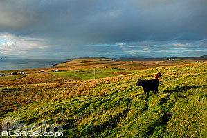Photo : Port Kilbride, Trotternish, Isle of Skye, Highlands, Scotland, United Kingdom