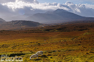 Photo : Paysage le long de la route A838 (North Coast 500), Ganu Mòr, Foinaven, North West Sutherland, Highlands, Scotland, United Kingdom