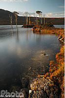 Photo : Loch Assynt, North West Sutherland, Highlands, Scotland, United Kingdom