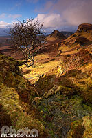 Photo : Quiraing, Trotternish, Isle of Skye, Highlands, Scotland, United Kingdom
